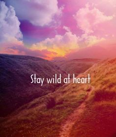 stay wild at heart | words