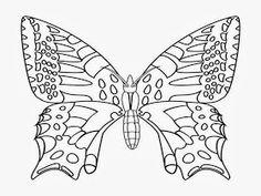 Butterfly Cartoone Colour Drawing HD Wallpaper