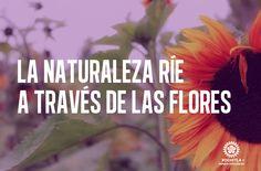 La naturaleza ríe a través de las flores.