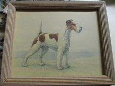 Vintage Wire Hair Fox Terrier Framed Reliance Print by nimasonry