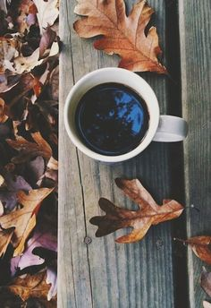 Angy's tea room: AUTUMN / WINTER ESSENTIALS, GREAT MUSIC AND INSPIRATION #coffee #forest #kinfolk
