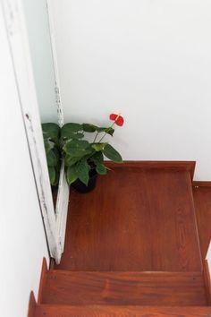 Interiores #165: Jardín secreto – Casa Chaucha Exterior, Home Decor, Environment, Terrace, Gardens, Plants, Interiors, Decoration Home, Room Decor