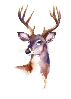 Wildlife Fabric, Deer Fabric, Watercolor Fabric, Elk Fabric 370 – Beautiful QuiltYou can find Watercolor art and more on our website. Watercolor Deer, Watercolor Fabric, Watercolor Animals, Watercolor Paintings, Watercolor Images, Hirsch Illustration, Deer Illustration, Watercolor Illustration, Animal Paintings