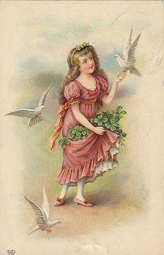 fair colleen , doves and shamrocks