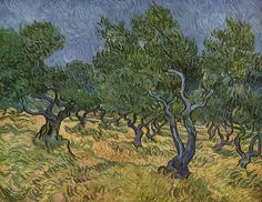 Van Gogh and the Olive Tree | Daydream Tourist