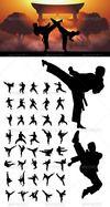 03_taekwondo_and_karate_silhouettes_preview.__thumbnail