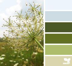 Design a color palette Colour Pallette, Color Palate, Green Color Schemes, Color Combos, Palette Verte, Color Harmony, Design Seeds, Color Swatches, Color Theory