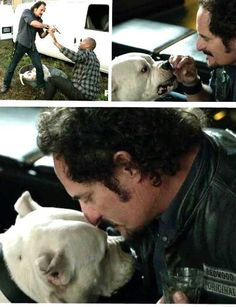 This scene my favorite Tig scene of all the seasons. I laughed so hard when Dante got attacked by the other dog in the van