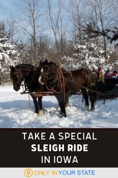 Take a scenic horse drawn sleigh ride through the snow this winter in Iowa! Find this adventure at a local farm. Fun Outdoor Activities, Outdoor Fun, Winter Fun, Winter Travel, Jester Park, Vacation Destinations, Vacations, Abandoned Prisons, Horse Drawn Wagon