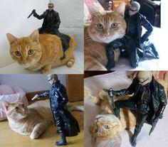 I cannot stop giggling - OMG, that poor kitty is like 'WTF dude???' - ha ha ha ha!