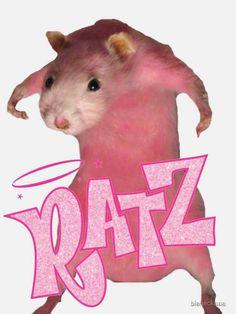 Baby Animals, Funny Animals, Cute Animals, Stupid Funny Memes, Haha Funny, Rats Mignon, Cute Rats, Animal Jokes, Mood Pics