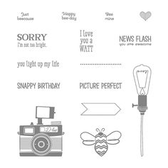 Pun Intended Photopolymer Stamp Set by Stampin' Up!