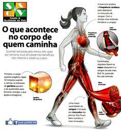 O que acontece ao corpo de quem caminha?