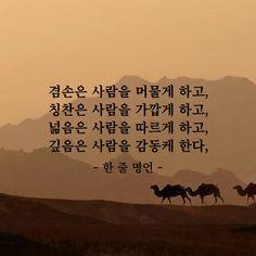 겸손은 사람을 머물게 하고 Wise Quotes, Famous Quotes, Inspirational Quotes, Say Say Say, Learn Korea, Language Quotes, Korean Quotes, Life Words, Korean Language