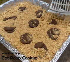 Cat Poop Cookies for April Fool's Day - Fun Food For Kids
