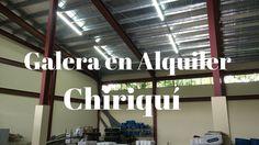 Amplias Galeras de alquiler en David, Chiriquí Prestige Panama Realty. 6...