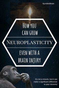 My blog on living with brain injury: Neuroplasticity is how the brain forms how connections, which is important for recovery from a brain injury. But you can help it make a better you.