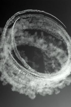 This would be a cool set of black and white images.  Maybe take them at the airshow?