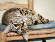 Sherry Egger    COLORED PENCIL