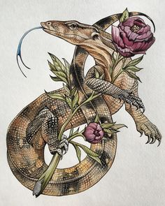 Monitor watercolor illustration by veronica steiner - tattoo style lizard and peonies