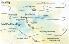 1000 ideas about catfish rigs on pinterest catfish bait for Best catfish rig for bank fishing