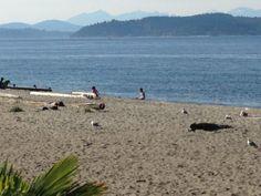 Alki Beach on Puget Sound