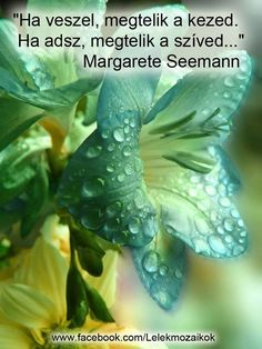 Margarete Seemann gondolata az adakozásról. A kép forrása: Lélekmozaikok # Facebook