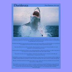 Desiderata Shark Jumping Posters