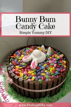 Cute Bunny Bum Candy Cake for Easter or Birthday desserts for adults cake recipes Cute Bunny Cake - For Birthdays, Easter or Just Because! Easter Cake Easy, Easy Easter Desserts, Easter Snacks, Easter Bunny Cake, Kid Desserts, Easter Treats, Easter Recipes, Bunny Cakes, Cakes For Easter