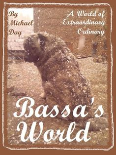Bassa's World by Michael Day, http://www.amazon.com/dp/B00AMKN0WI/ref=cm_sw_r_pi_dp_3vTarb0YZVAAX