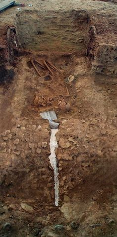 the 31 best iron age chariot burials images on pinterest iron age
