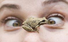 April Makes a Friend by Thomas Hawk, via Flickr