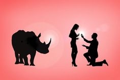 How the engagement ring proves that we shouldn't trade rhino horn - Africa Geographic Magazine Blog