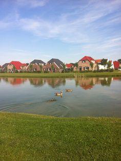 Vakantiepark in Limburg: Buitenhof de Leistert
