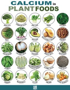 """25 Calcium-Rich Plant Foods That DON'T Come From Dairy! The first thing most people think of when they hear calcium is """"milk."""" This is mainly because the American dairy industry heavily promotes the consumption of milk as a human's sole source of calcium. Vegan Nutrition, Health And Nutrition, Health Tips, Nutrition Shakes, Nutrition Guide, Spinach Nutrition Facts, Nutrition Month, Nutrition Store, Plant Based Nutrition"""