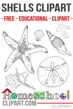 Learning about the Ocean is a great way to add some hands on learning to your classroom! Children love to see all the amazing creatures that God has placed in the sea. Wrap up your learning with a fun trip to a local aquarium and let children really gets their hands wet! With our craft …