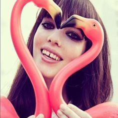OVERDIVITY: Inspiration: Flamingo
