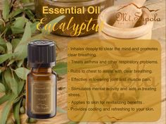 Muscle Pain, Asthma, Aromatherapy, Essential Oils, Mindfulness, Personal Care, Pure Products, Muscle Soreness, Self Care