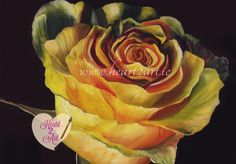 Signed Yellow Rose Print from Original Oil Painting by heart2artireland. Explore more products on http://heart2artireland.etsy.com