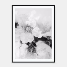 Black And White Blossoms Framed poster by ARTbyJWP via Live Heroes #homedecor #wallart #buyart #fineartphotography #flowers #artbyjwp