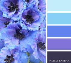 Color Schemes Colour Palettes, Colour Pallette, Color Palate, Color Combos, World Of Color, Color Of Life, Color Blending, Color Swatches, Color Theory