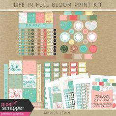 This kit includes individual PNG files, as well as a PDF file for easy printing and cutting. Bloom Planner, Life Planner, Home Management Binder, Free Digital Scrapbooking, Planner Stickers, Printables, Train, Kit, Templates