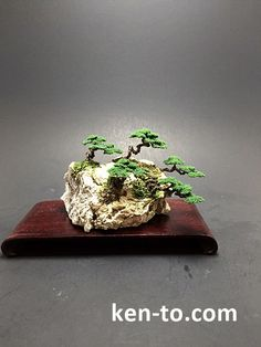 Mame Wire bonsai rock planting by Ken To by KenToArt.deviantart.com on @DeviantArt