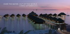 We're very excited to announce that we now have the overwater bungalows for sale in Riviera Maya! You cannot get these from an online agency! Contact us today for more info! #overwaterbungalows