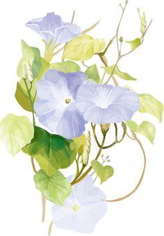 7 elegant watercolor flowers vector | Beautiful floral design vectors for free download at 4vector.com | free vector graphics | @4vector.com