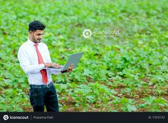 Indian agronomist at cotton field Photo Agriculture Photos, Cotton Fields, 3d Assets, Icon Pack, Model Release, Photo Illustration, Free Design, Vector Free, Photoshop