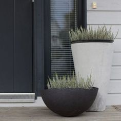 20+ Modern Plants Decorating Ideas For Stylish Front Door