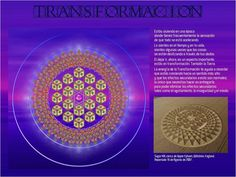 TRANSFORMAÇÃO Crop Circles, Crop Field, Quantum Physics, Foo Fighters, Sacred Art, Light Art, Sacred Geometry, Reiki, Affirmations