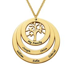 Buy Gold Plated Family Circle Necklace with Hanging Family Tree from MyNameNecklace UK! Our personalised jewellery is the perfect gift for every occasion Family Tree Necklace, Circle Necklace, Leaf Necklace, Name Necklace, Gold Necklace, Bracelet Cordon, Diamond Solitaire Necklace, Birthstone Necklace, Gifts For Family