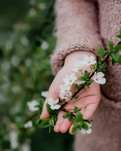 ༺ Beautiful ~ Inside and Out ༻ Hand Photography, Spring Photography, Flower Photography, Landscape Photography, Photography Outfits, Photography Aesthetic, Photography Backdrops, People Photography, Product Photography